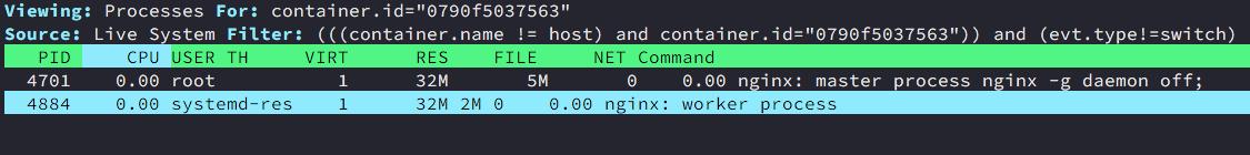 Nginx container processes in Vagrant ubuntu bionic